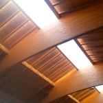 Landwirtschaftliche Halle mit Lichtfirst